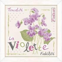 J007 La Violette