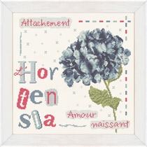 J008 L'Hortensia