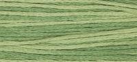 Week Dye Works Ivy 2198