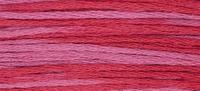 Week Dye Works Begonia 2263