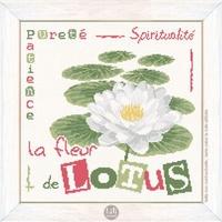 J018 Le lotus
