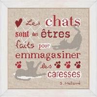 Z002 Les chats sont des êtres...